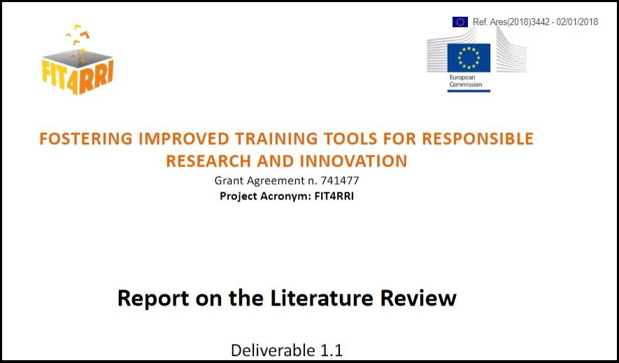 snapshot literature review